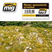 AMIG8351 STONY MOUNTAIN GROUND